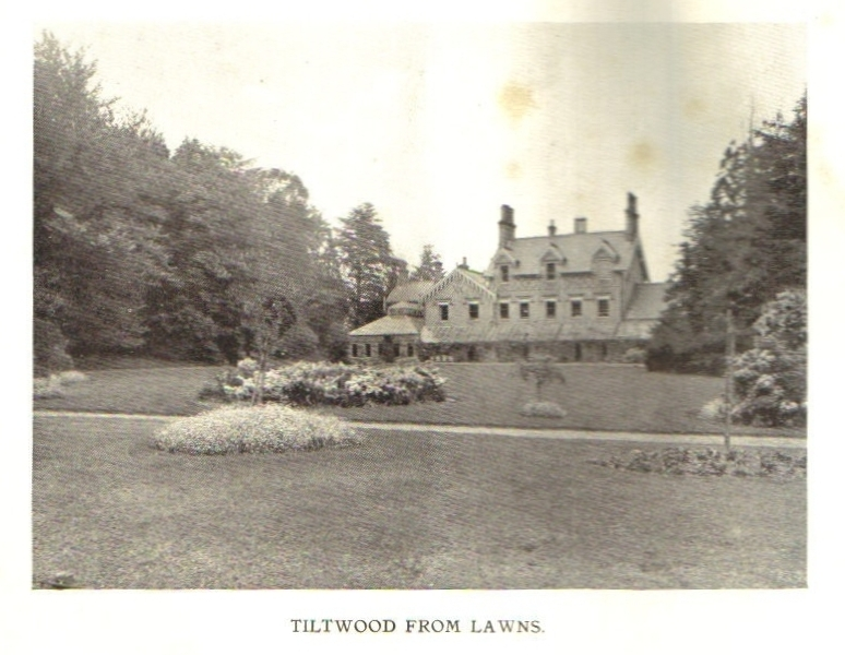 Tiltwood from the Lawn